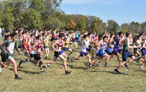Seniors Cross the Finish Line At States
