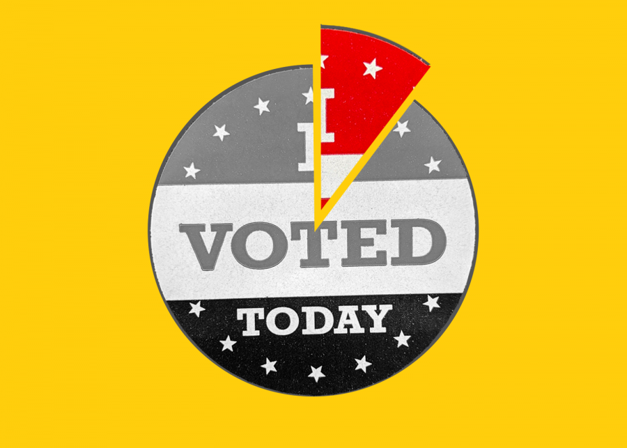 "An ""I voted"" sticker is segmented like a pie chart, the outstanding portion representing the growing Generation Z voting population. According to Pew Research Center, one-in-ten voters in the 2020 general election are 18 to 23 years old."