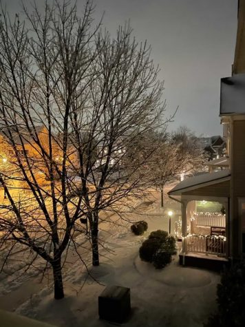 An evening view of the first frost of the season from senior Shirley Li's home. The holiday lights added to the beautiful snow day. (Photo courtesy of Shirley Li)
